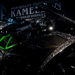 【3Dペイント PAINT】R.P.WITH KAWASAKI Ninja H2【KAMELEON カメレオン】